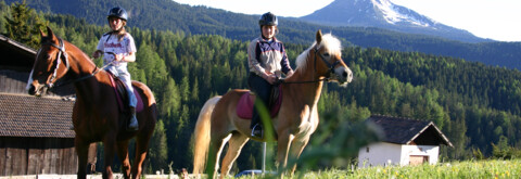 Learn how to ride properly at the hotel-own stables
